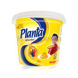Planta Margarine 480gm