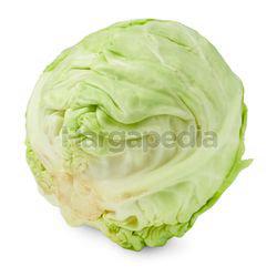 Beijing Cabbage 1kg
