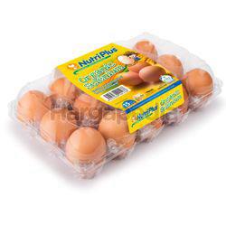 Nutriplus Organic Selenium Eggs (Medium) 15s