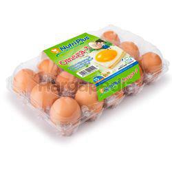 Nutriplus Eggs Omega 3 Eggs Medium 15s