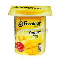 Fernleaf Low Fat Yogurt Mango 110gm