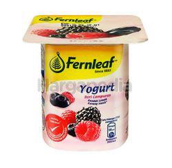 Fernleaf Low Fat Yogurt Mixed Berries 110gm