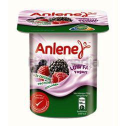 Anlene Low Fat Yogurt Mixed Berries 110gm