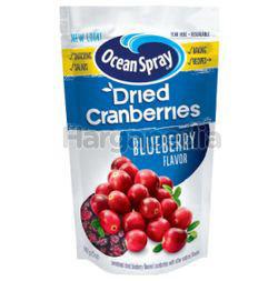 Ocean Spray Craisins Blueberry 142gm