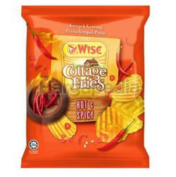 Wise Cottage Fries Potato Chips Hot & Spicy 65gm