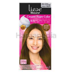 Liese Blaune Creamy Foam Color 2 Bronze Brown 1set