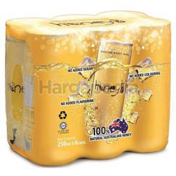 Honey B Sparkling Drink 6x250ml
