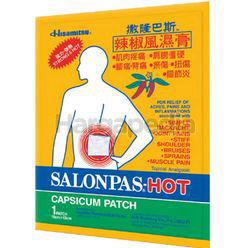 Salonpas Hot Patch Large 1s
