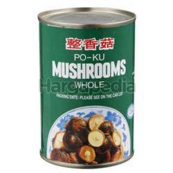 Alishan Po-ku Mushroom 284gm