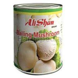 Alishan Bailing Mushroom 850gm