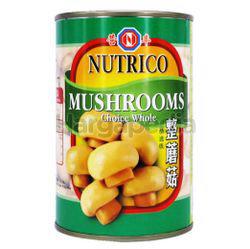 Nutrico Whole Button Mushroom 425gm