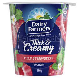 Dairy Farmers Thick & Creamy Yogurt Field Strawberry 150gm