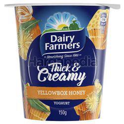Dairy Farmers Thick & Creamy Yogurt Yellow Box Honey 150gm