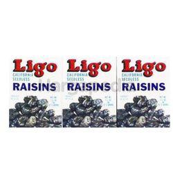 Ligo Raisins Black 3x30gm