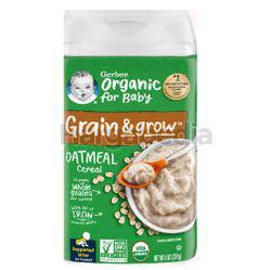 Gerber Organic Oatmeal Cereal 227gm