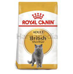 Royal Canin British Shorthair Adult 4kg