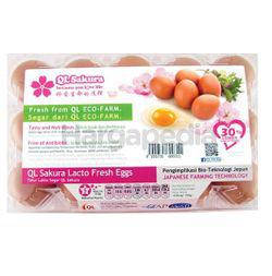 QL Sakura Lacto Fresh Eggs 15s