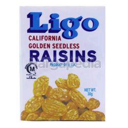 Ligo Golden Raisins 30gm
