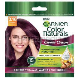 Garnier Color Naturals Express Hair Color 3.16 Merah Burgundy 1s