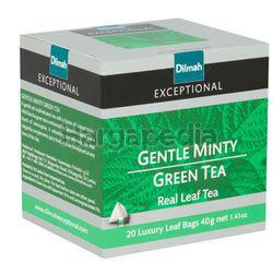 Dilmah Exceptional Gentle Minty Green Tea Luxury Leaf 20s