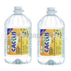 Cactus Distilled Drinking Water 2x5.5lit