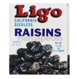 Ligo Raisins Black 30gm