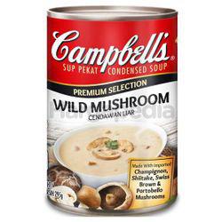 Campbell's Premium Wild Mushroom Soup 295gm