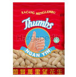 Thumbs Ngan Yin Menglembu Nuts 60gm