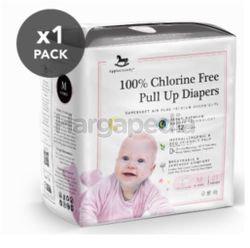 Applecrumby Chlorine Free Premium Overnight Pull Up Diapers M21