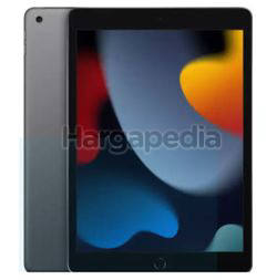 Apple 10.2-Inch iPad Wi-Fi + Cellular 9th Gen 256GB